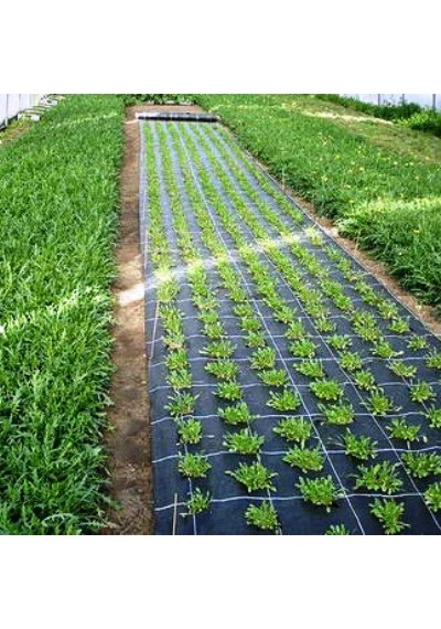 Агроволокно 3.2 х 100 (П-50)